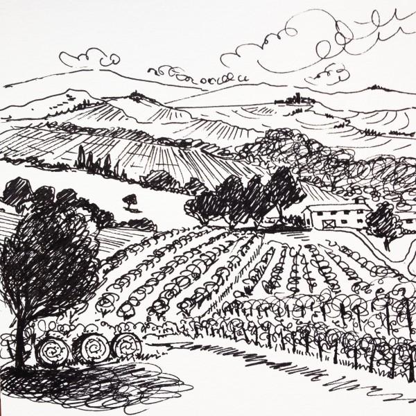 Daily Sketch No. 70, Italian Farmland