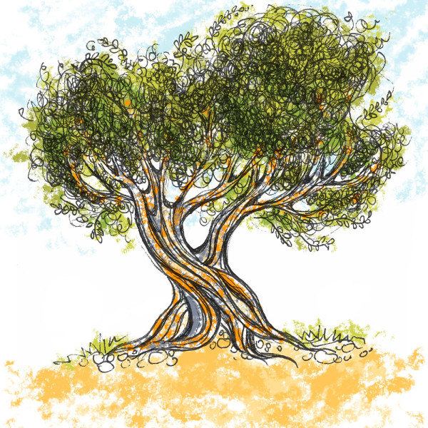 Olive Tree 1, ink drawing with digital color