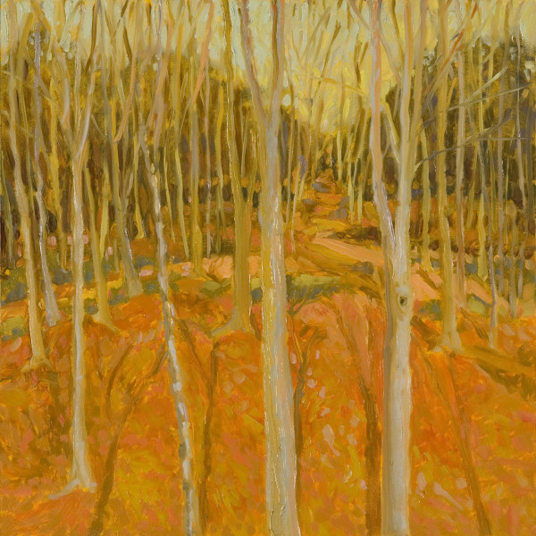 Woods Series No. 7, oil on panel, 12 x 12 inches, 2008