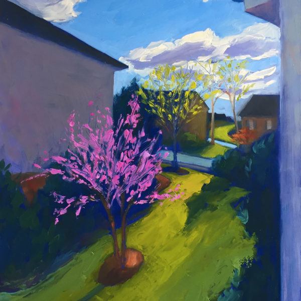 Morning Red Bud, oil on panel, 16x12 inches, 2017