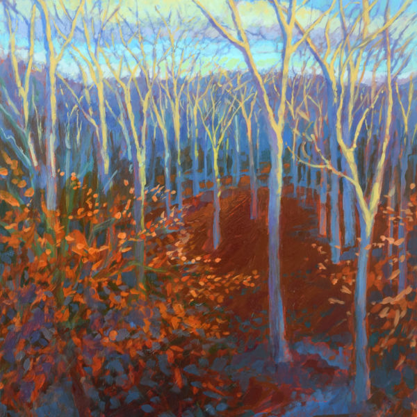 Winter Woods: Morning Light, acrylic on panel, 16 x 12 inches, 2017-019, SOLD